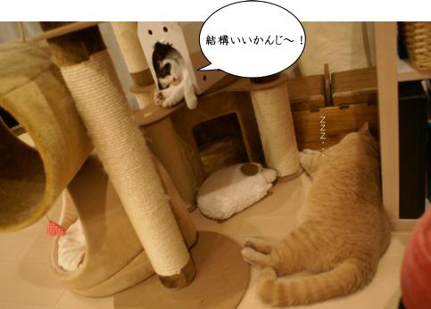 あたち快適~!.jpg