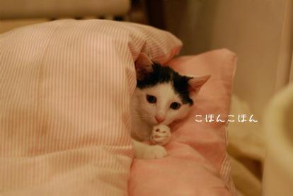 お風邪でしゅか?.jpg