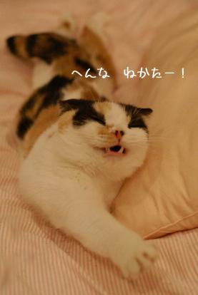 ぷぷぷー!.jpg