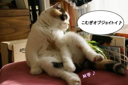 インリンよりもせくすぃ.jpg