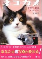 ネコカメ.jpg