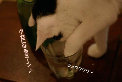 困ったミン(^-^;).jpg