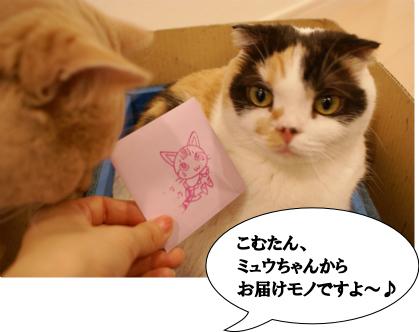 うれしいね~♪.jpg