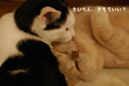 きもちいい?.jpg