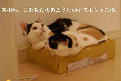のし付お風呂(笑).jpg