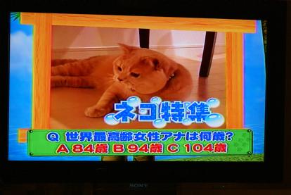 次週予告!.jpg